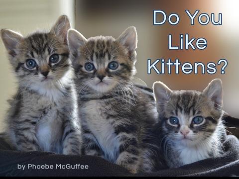 Do You Like Kittens?
