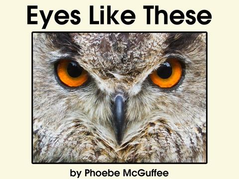 Eyes Like These