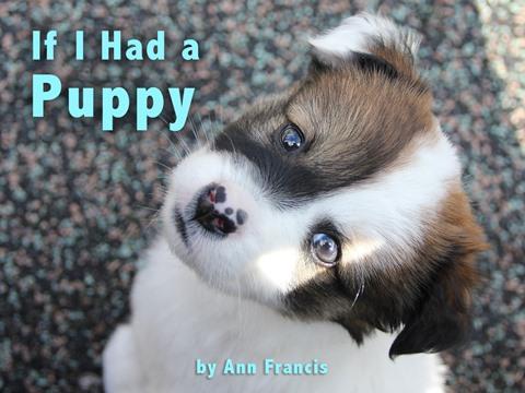 If I Had a Puppy