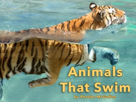 Animals That Swim