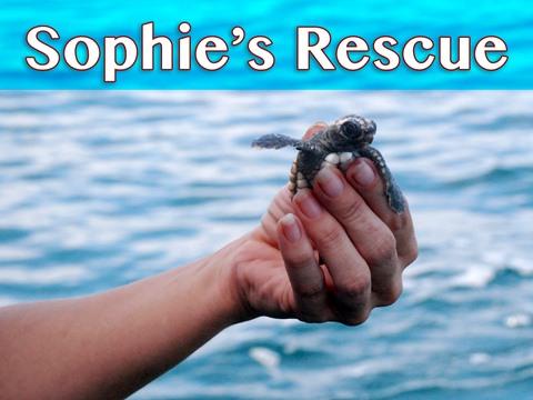 Sophie's Rescue
