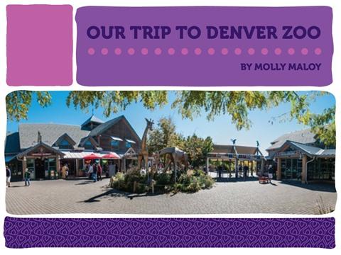 Our Trip to Denver Zoo