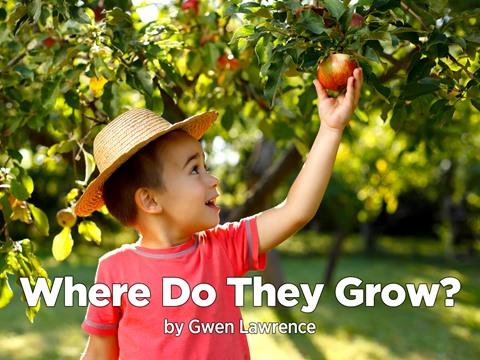 Where Do They Grow?
