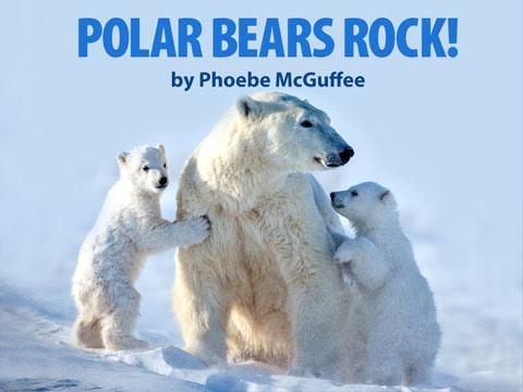 Polar Bears Rock!