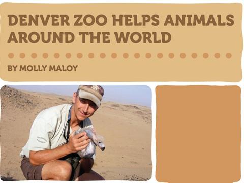 Denver Zoo Helps Animals Around the World
